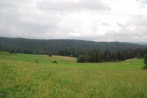 Hohe_Tatra_T8_14_07_002